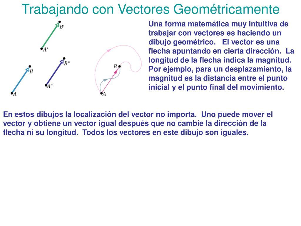 Trabajando con Vectores Geométricamente