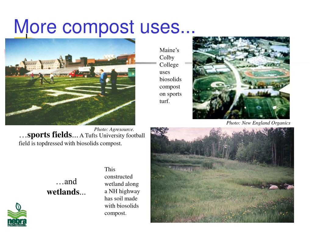 More compost uses...