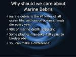 why should we care about marine debris
