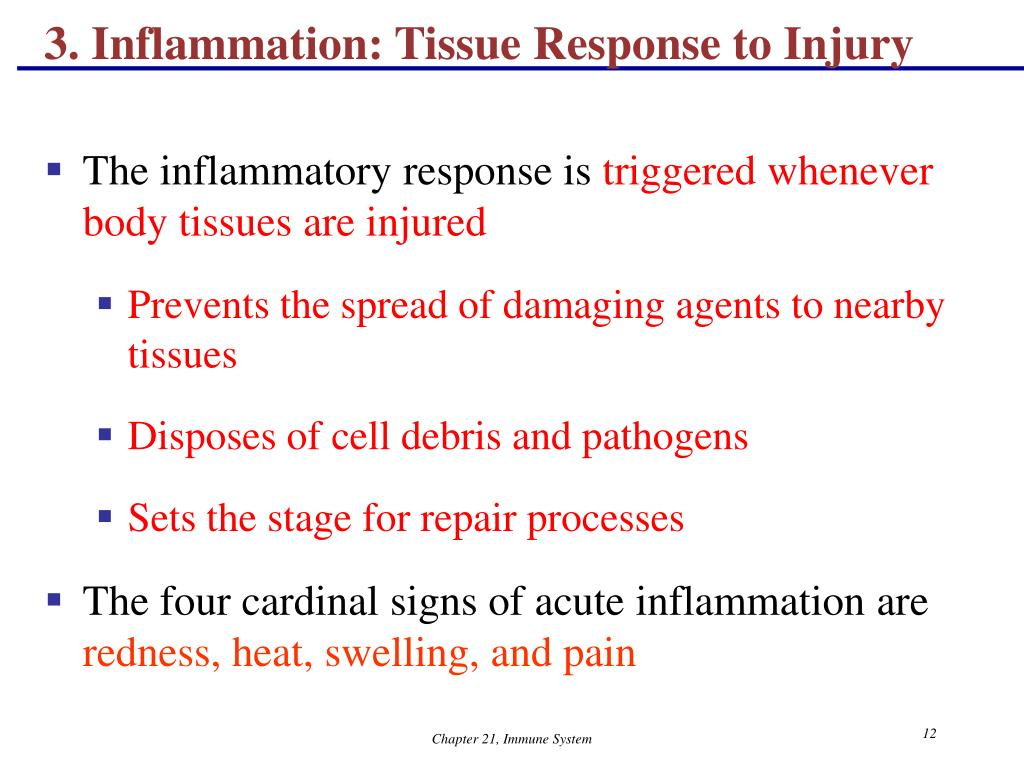 3. Inflammation: Tissue Response to Injury