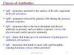 classes of antibodies