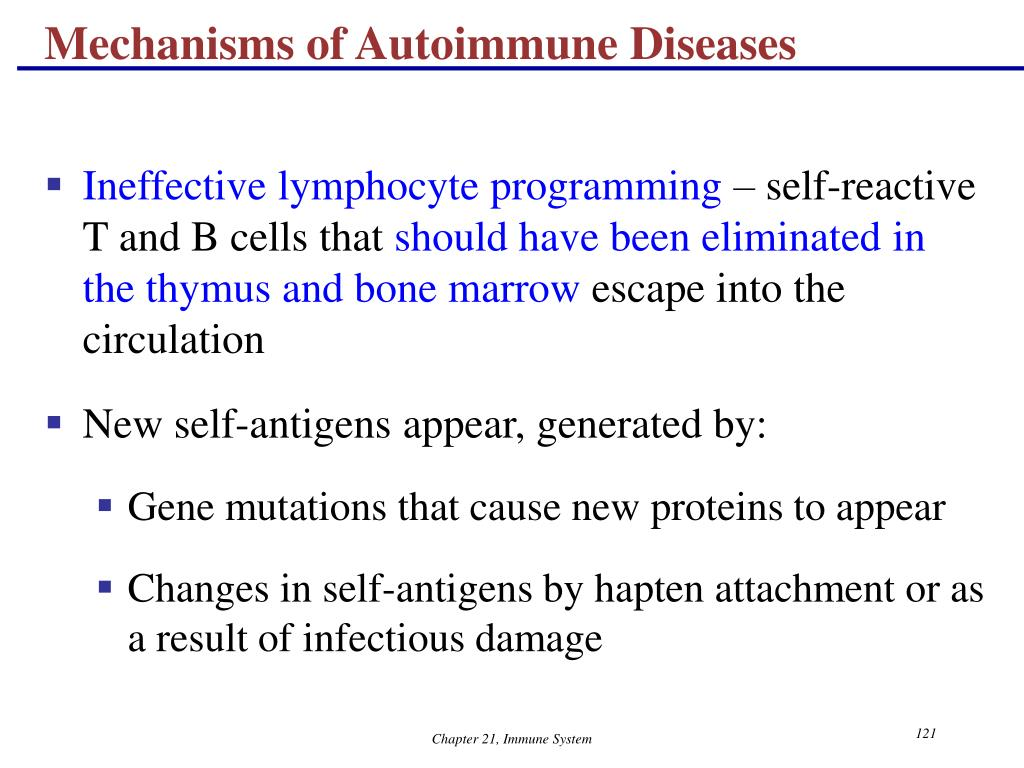 Mechanisms of Autoimmune Diseases