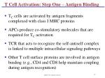 t cell activation step one antigen binding91