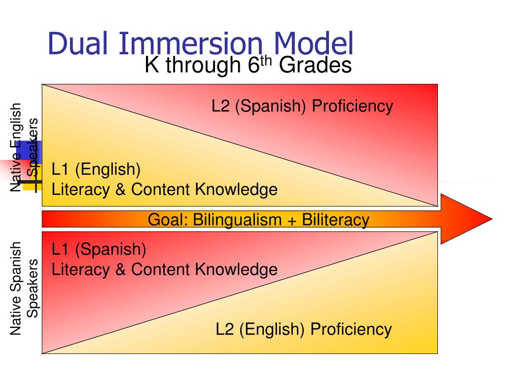 L2 (Spanish) Proficiency