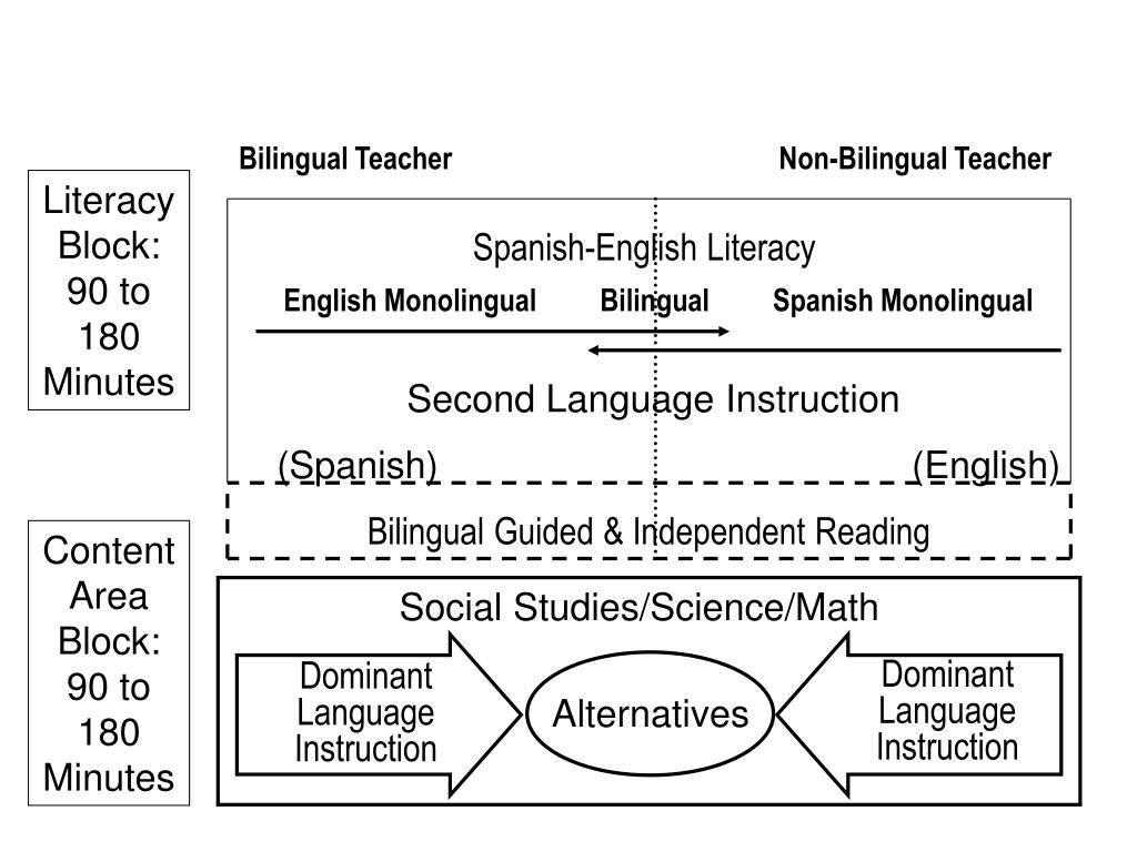 Dominant Language Instruction
