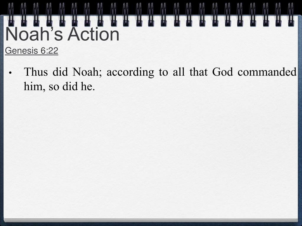Noah's Action