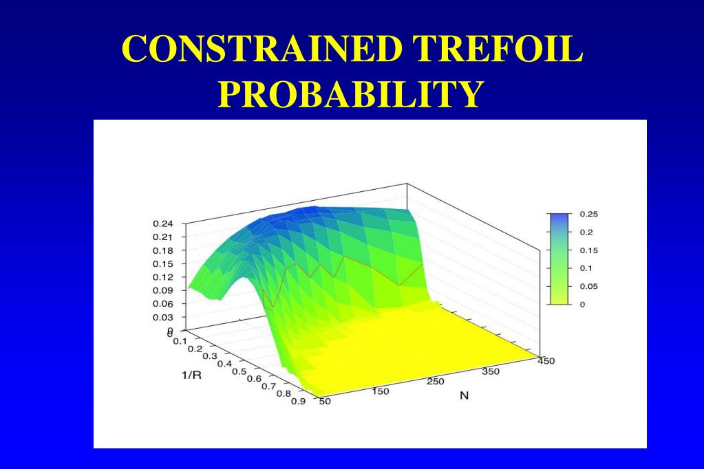 CONSTRAINED TREFOIL PROBABILITY