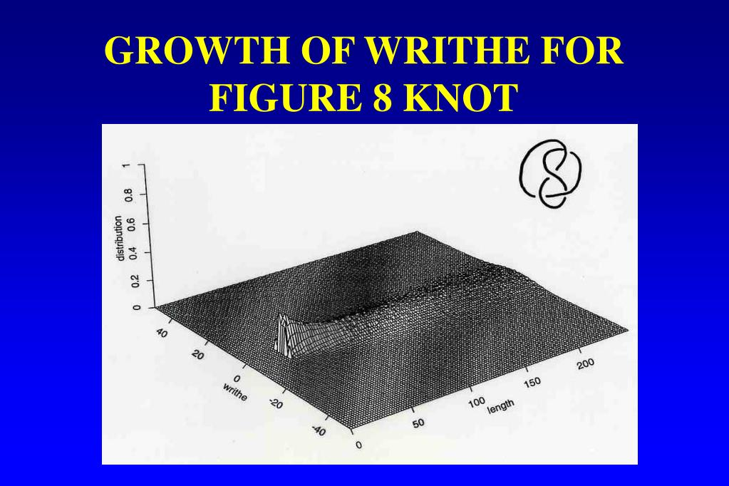 GROWTH OF WRITHE FOR FIGURE 8 KNOT