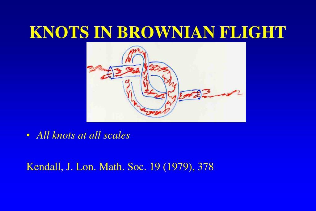 KNOTS IN BROWNIAN FLIGHT