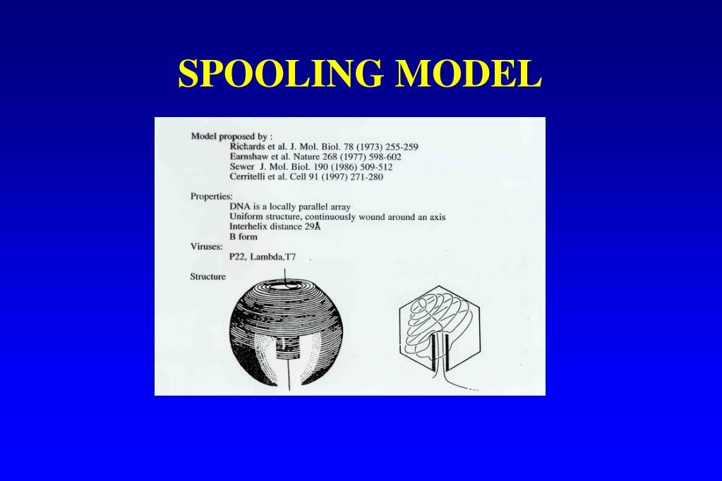 SPOOLING MODEL
