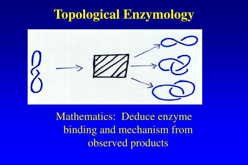 Topological Enzymology