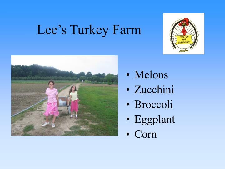 Lee s turkey farm