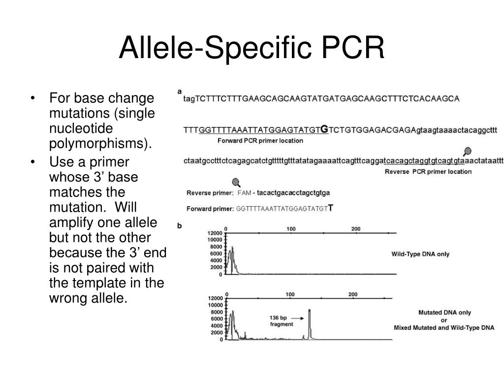 Allele-Specific PCR