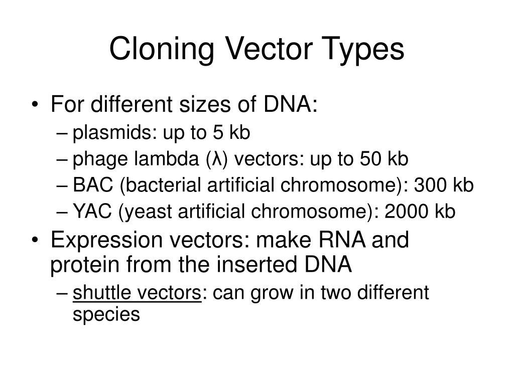 Cloning Vector Types