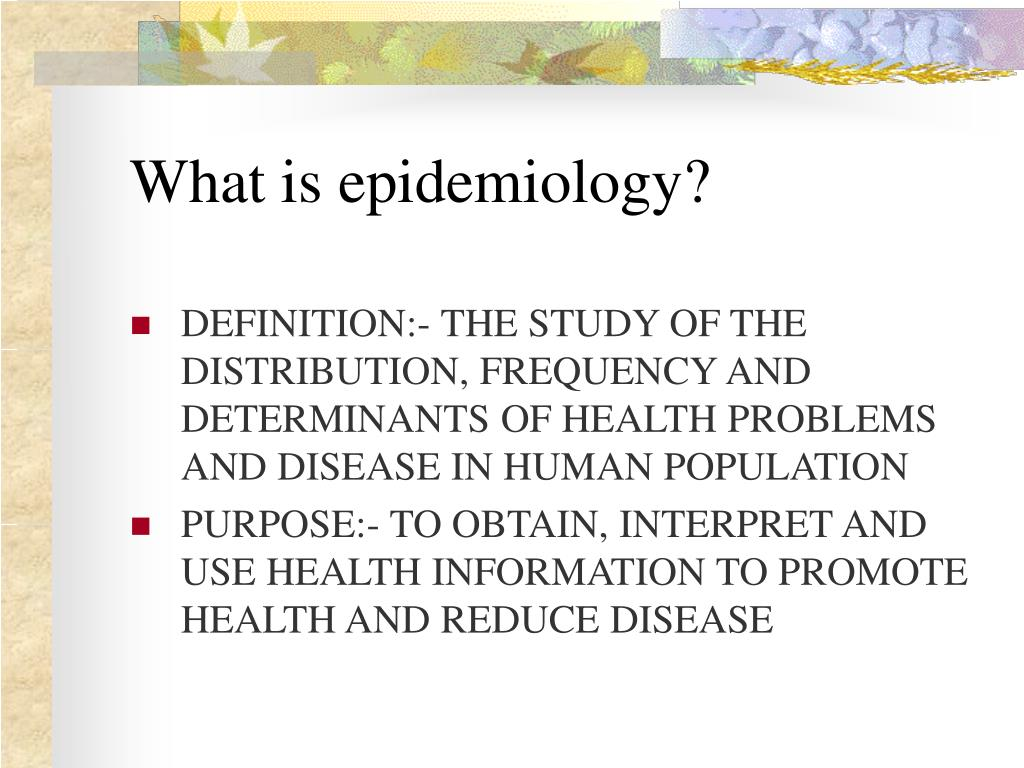 social determinants of health essay example