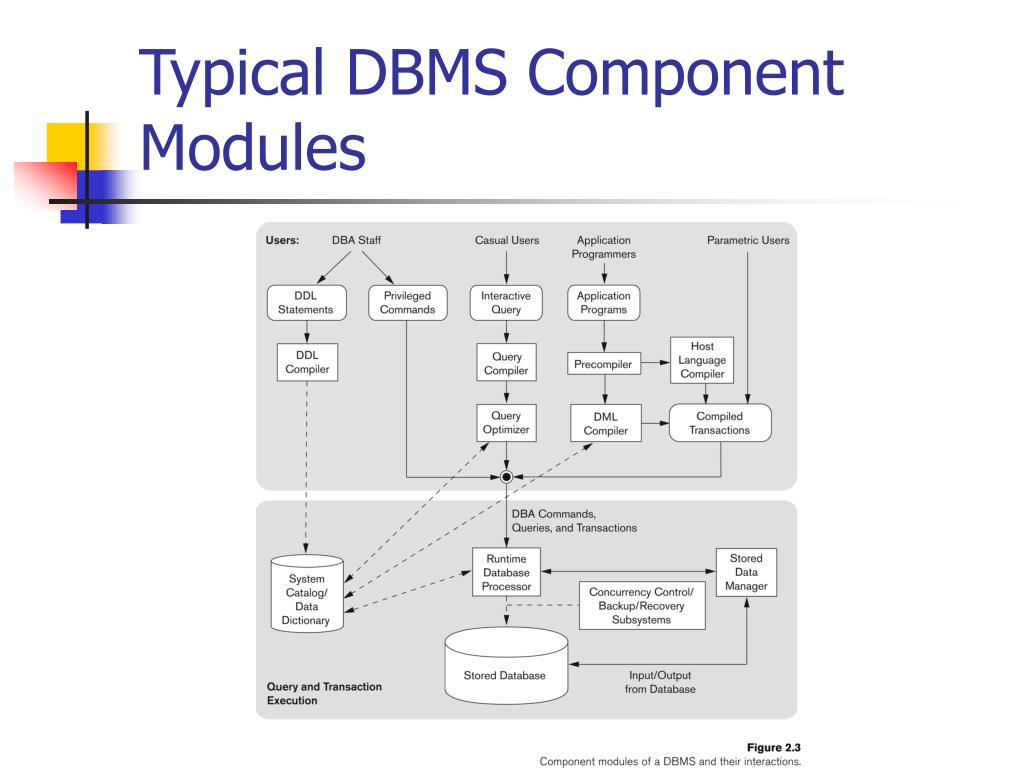 what dbms component is responsible for Dbms responsible for implementing the query command and query results displayed on the screen (4) data organization and access: provide data in the external storage device, the physical organization and access methods.