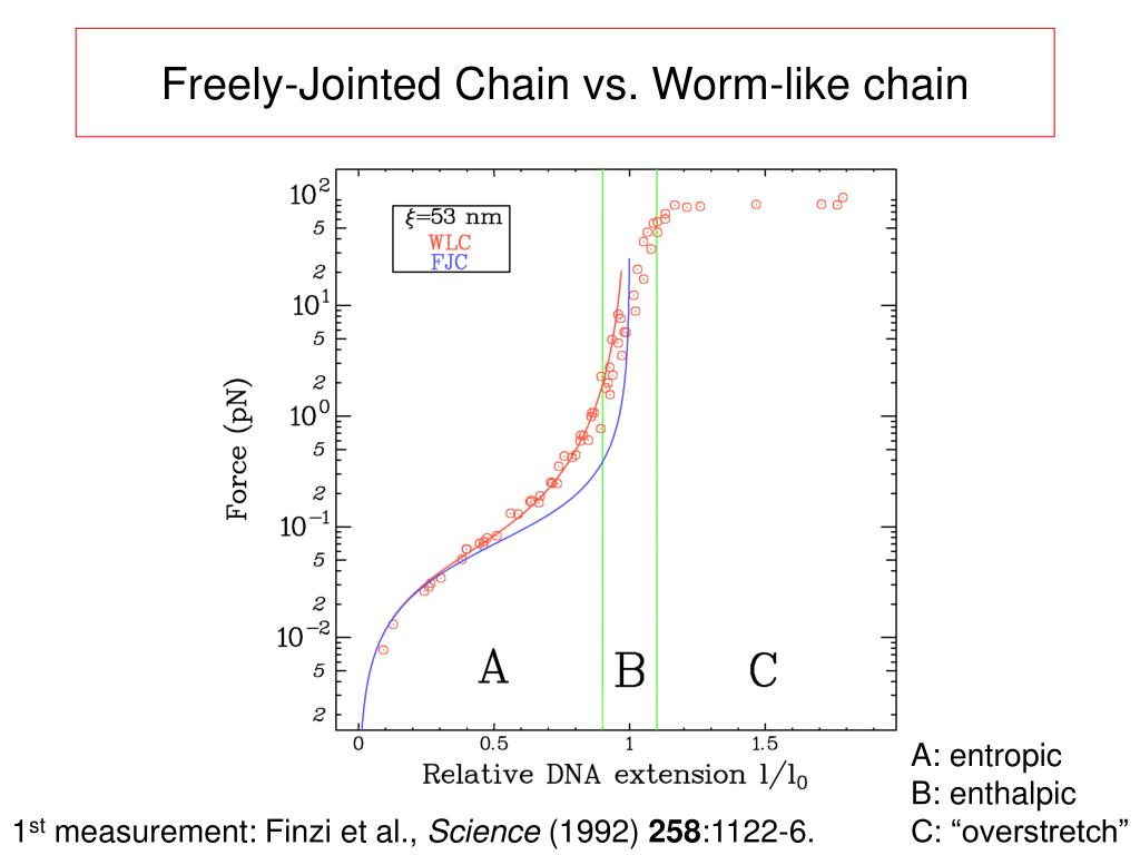 Freely-Jointed Chain vs. Worm-like chain