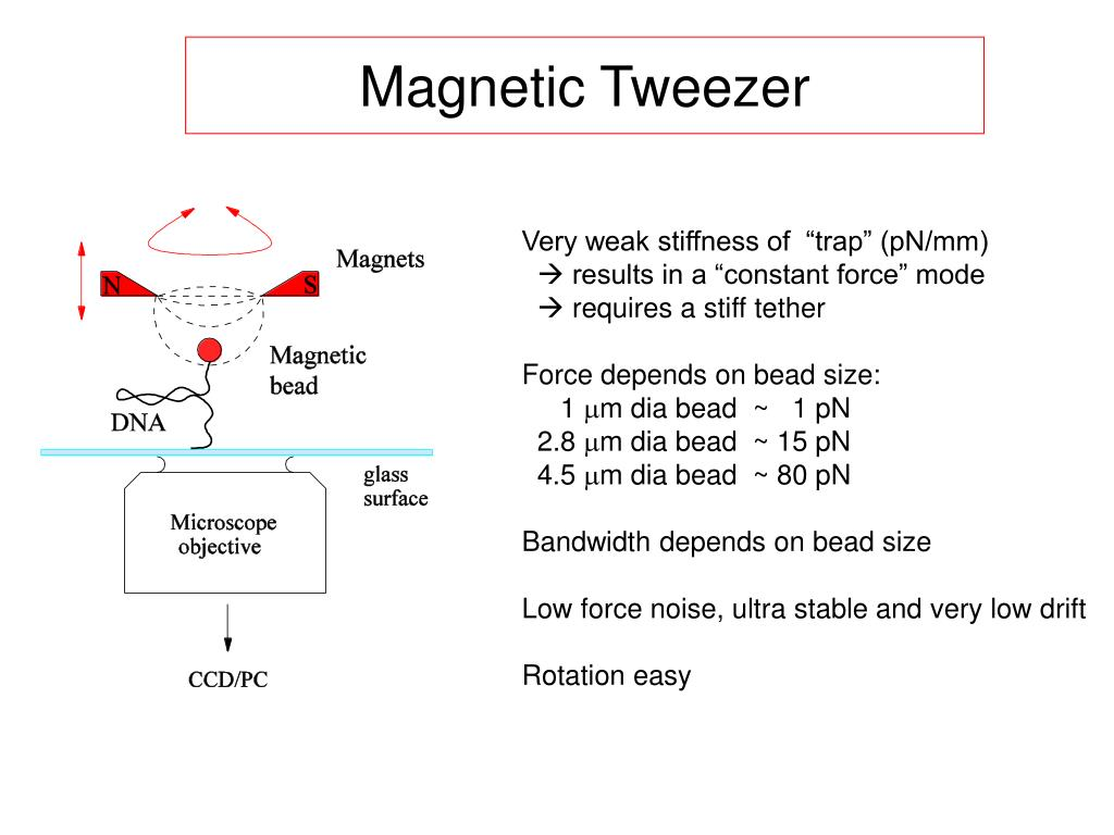 Magnetic Tweezer