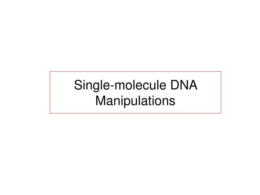 Single-molecule DNA Manipulations