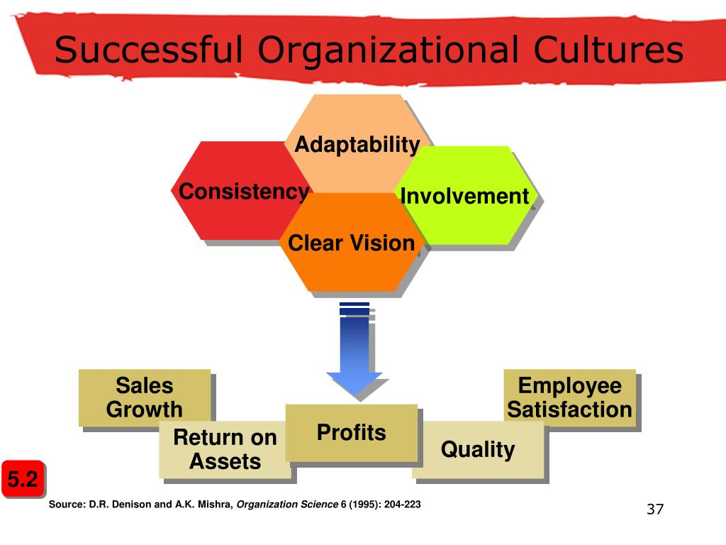 forces that affect organization environment relationships All outside factors that may affect an organization make up the external environment the external environment is divided into two parts: directly interactive: this environment has an immediate and firsthand impact upon the organization a new competitor entering the market is an example indirectly.