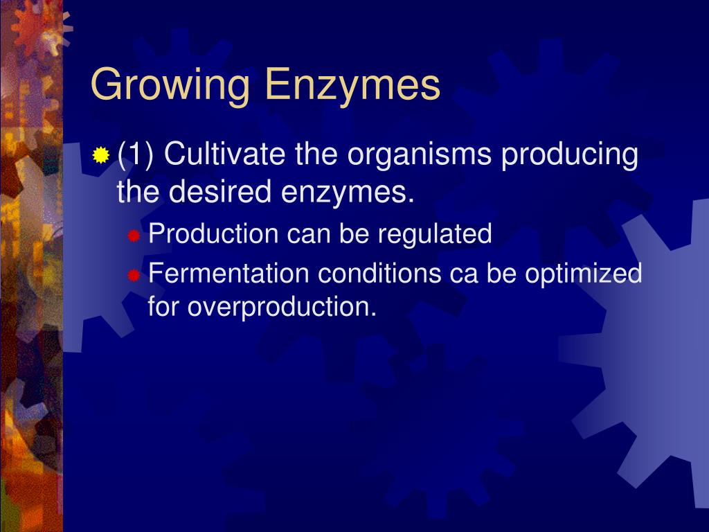 Growing Enzymes