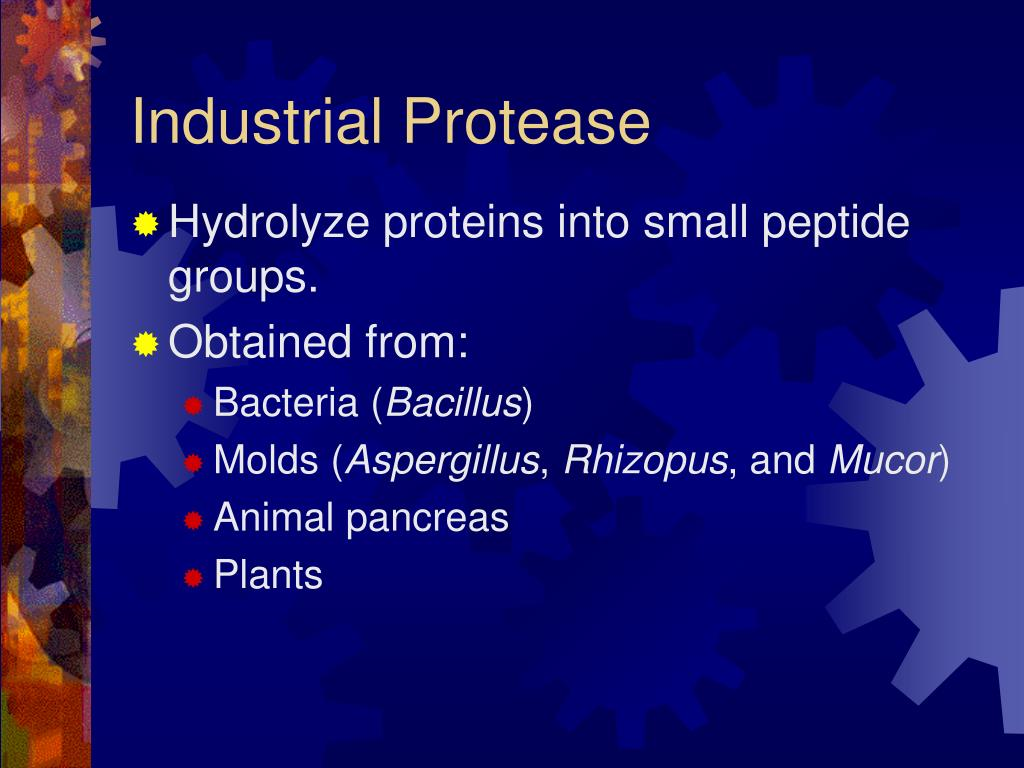 Industrial Protease