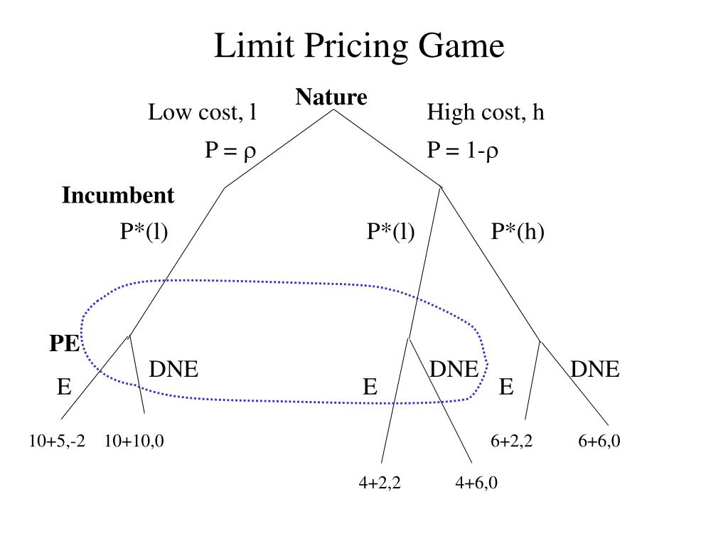 Limit Pricing Game