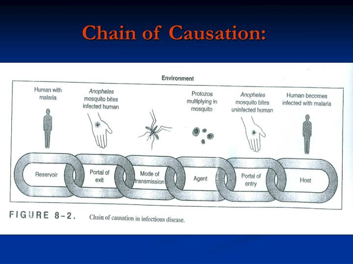 Chain of Causation: