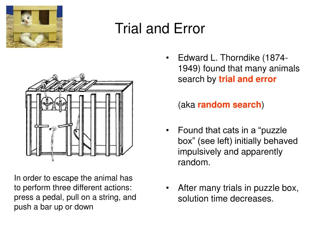 Edward L. Thorndike (1874-1949) found that many animals search by
