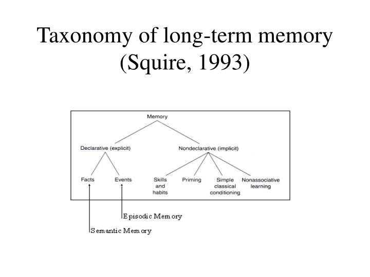 Taxonomy of long term memory squire 1993