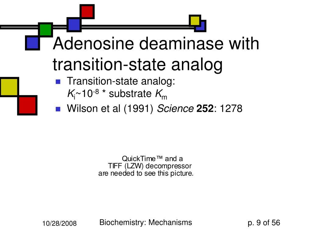 Adenosine deaminase with transition-state analog