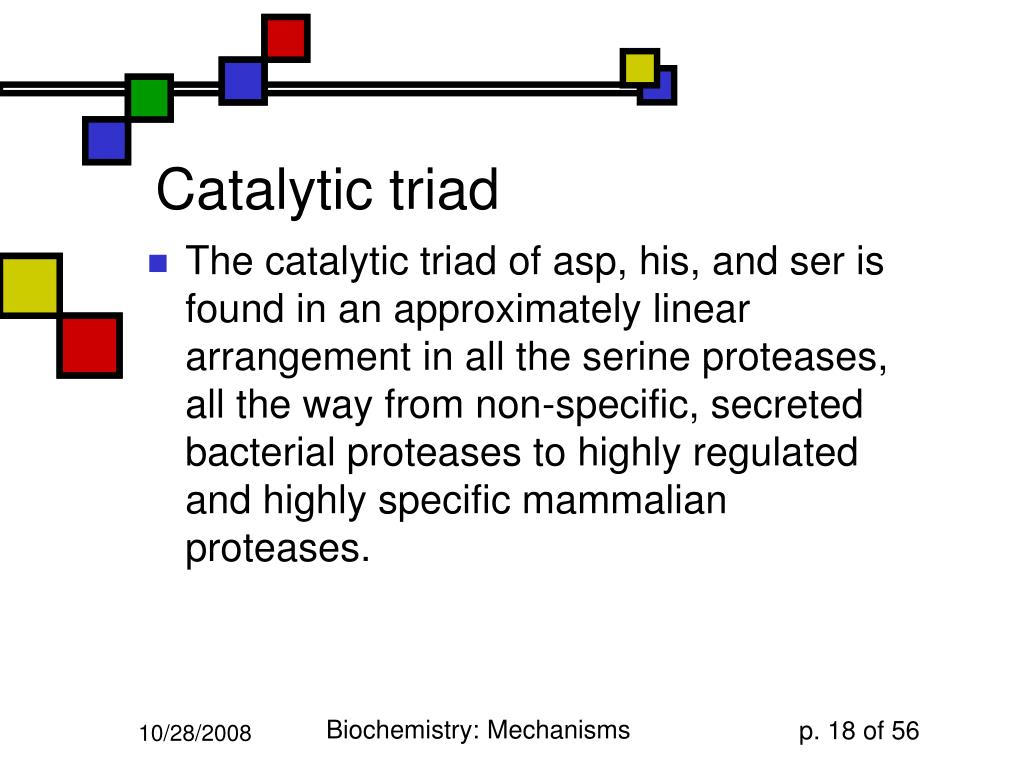 Catalytic triad