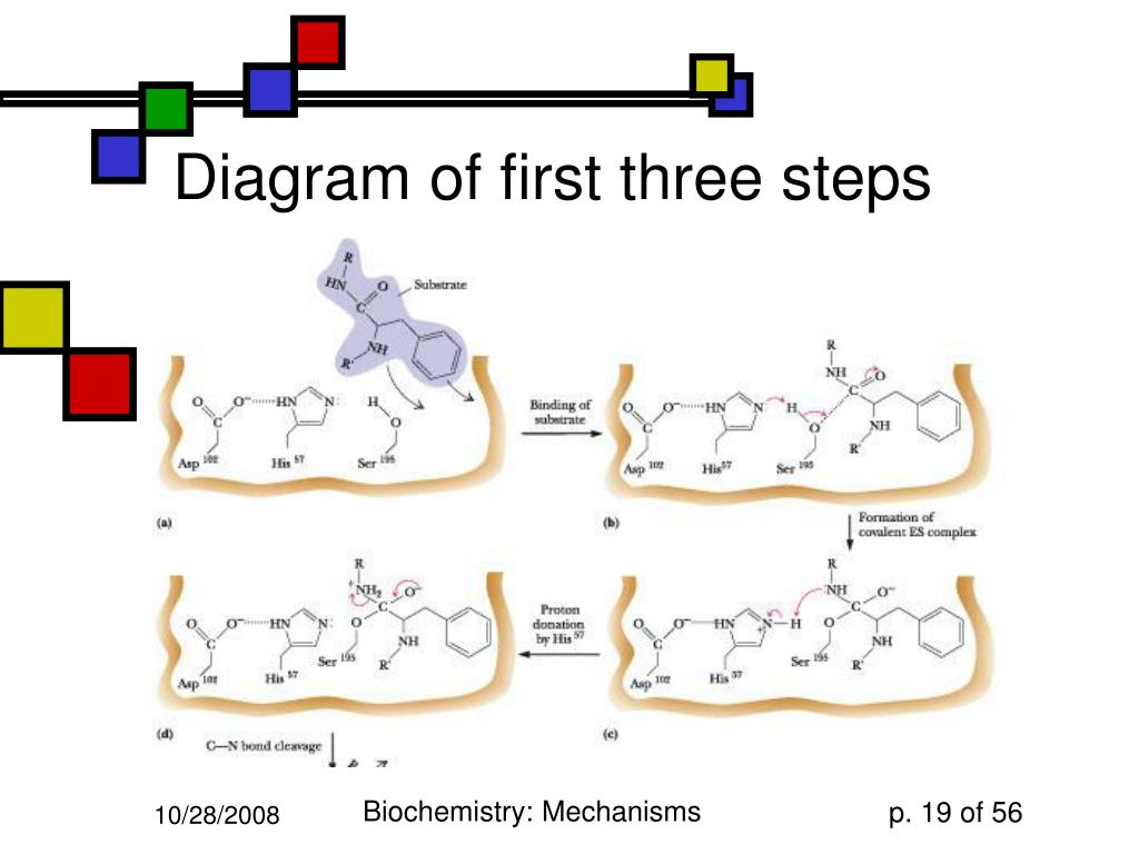 Diagram of first three steps