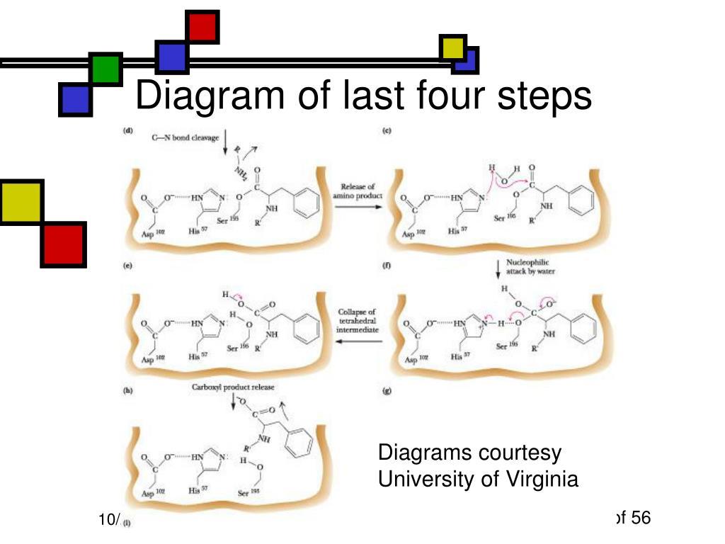 Diagram of last four steps