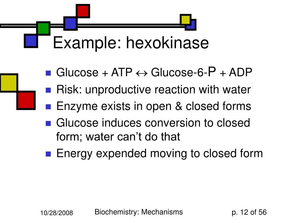 Example: hexokinase