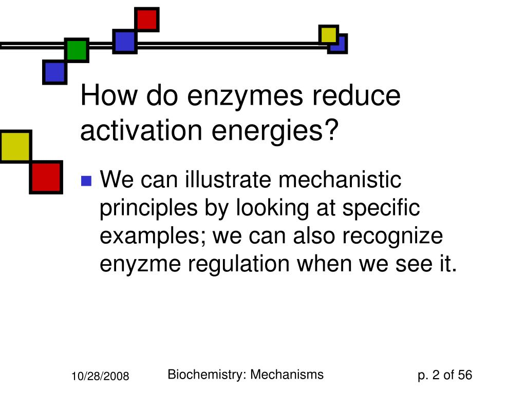 How do enzymes reduce activation energies?