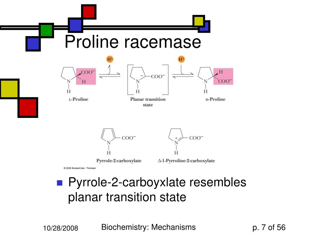Proline racemase