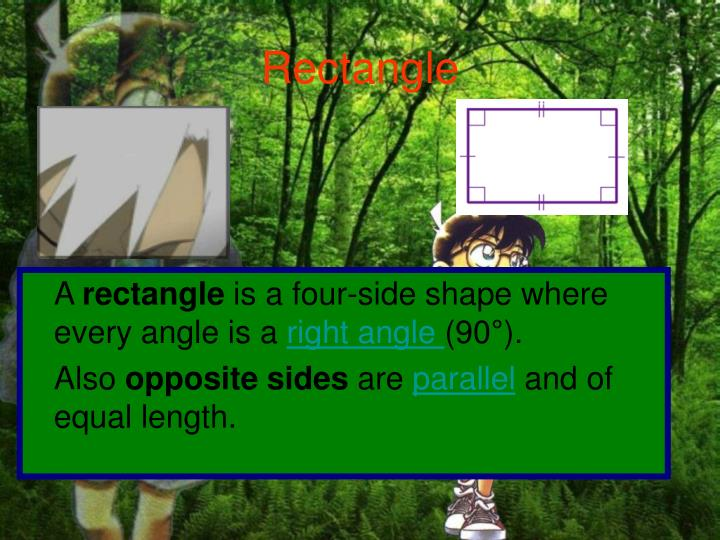 Rectangle l.jpg