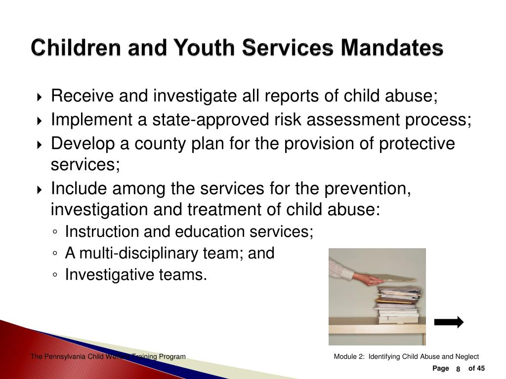 Children and Youth Services Mandates
