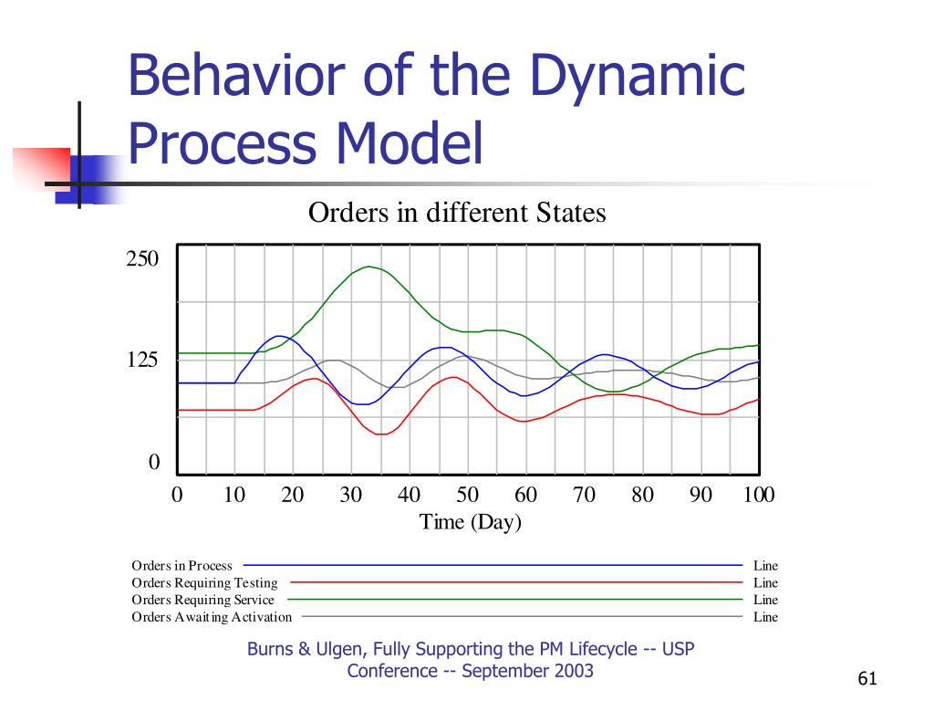 Behavior of the Dynamic Process Model