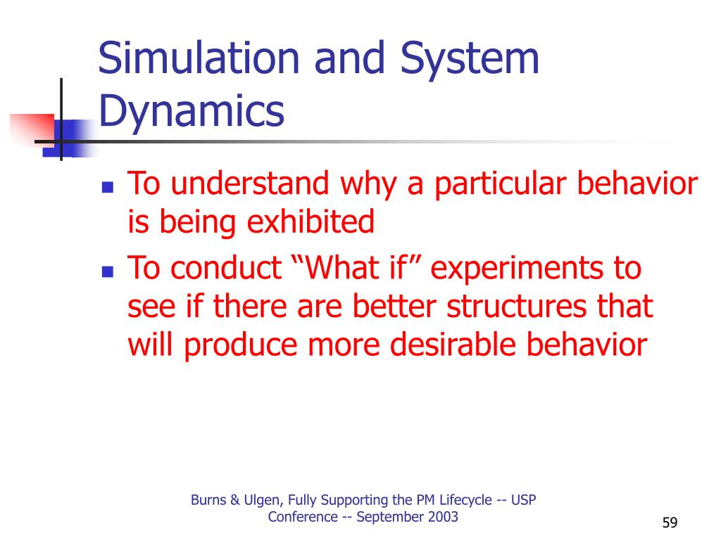 Simulation and System Dynamics