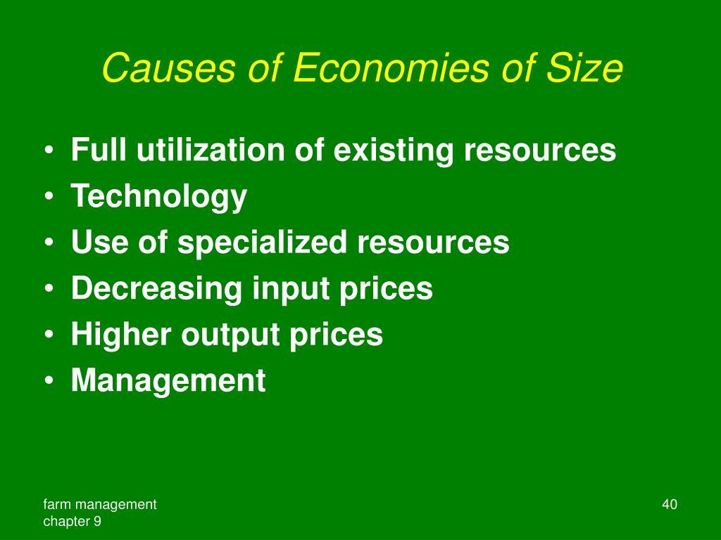 Causes of Economies of Size