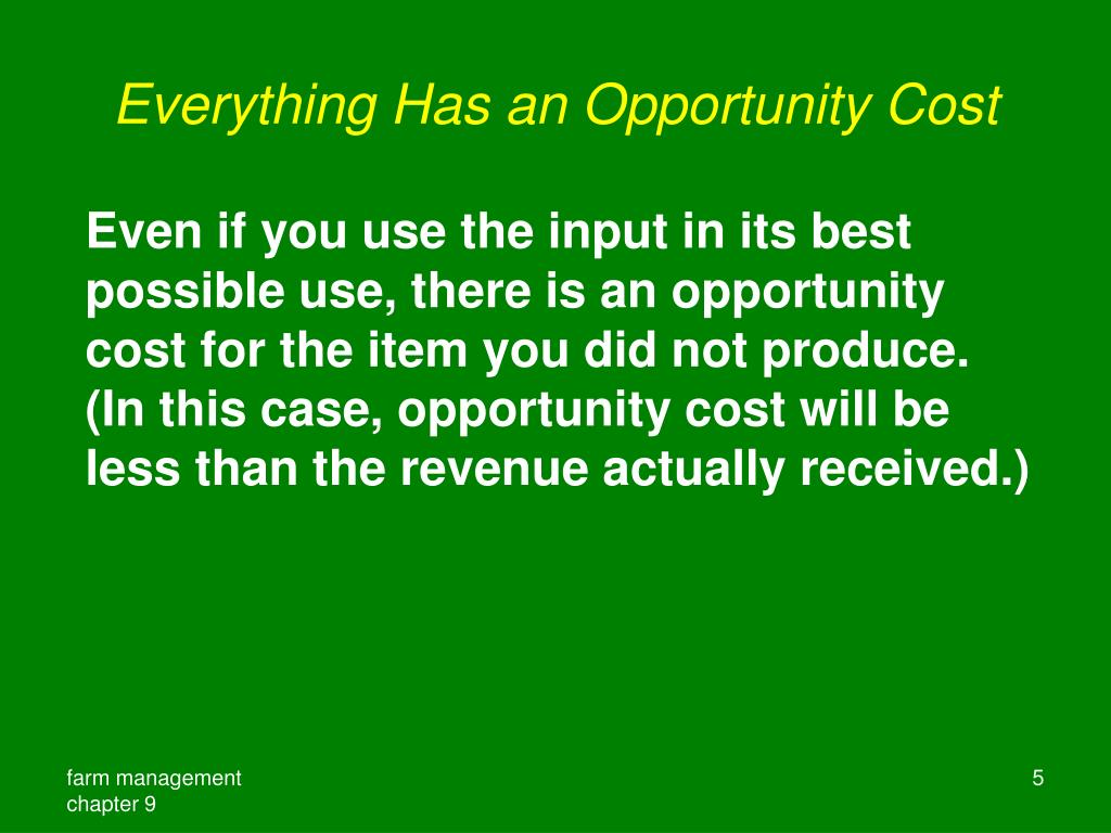 Everything Has an Opportunity Cost