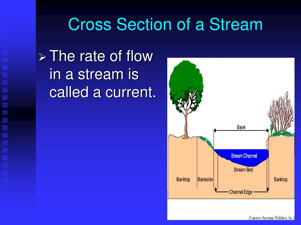 Cross Section of a Stream