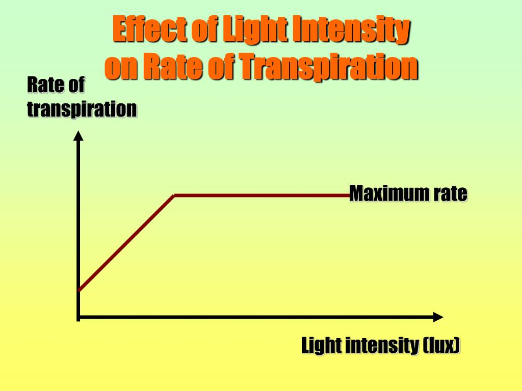 Effect of Light Intensity                                                    on Rate of Transpiration