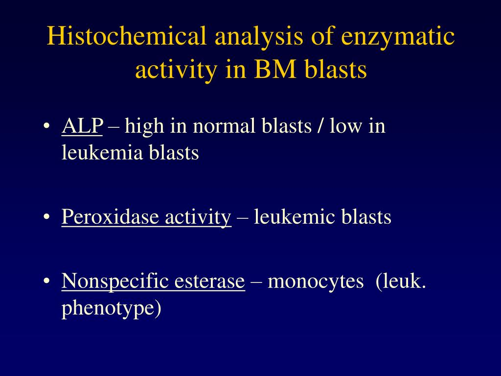 Histochemical analysis of enzymatic activity in BM blasts