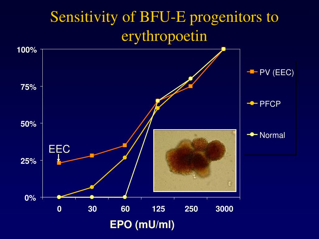 Sensitivity of BFU-E progenitors to