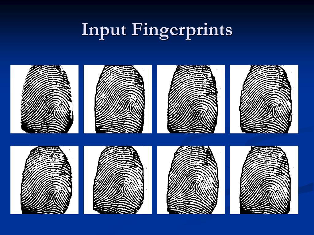 Input Fingerprints