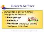 roots suffixes