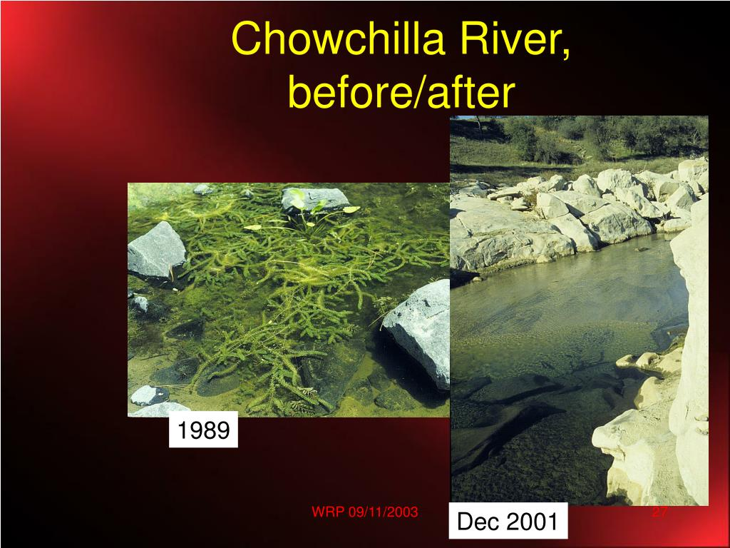 Chowchilla River, before/after